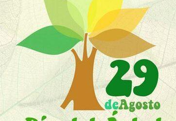 Celebramos el día del árbol plantando